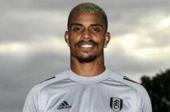 Mario Lemina resmen Fulham'da