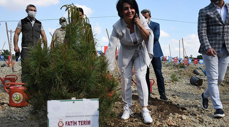 Fatih Terim Hatıra Ormanı hayata geçiyor